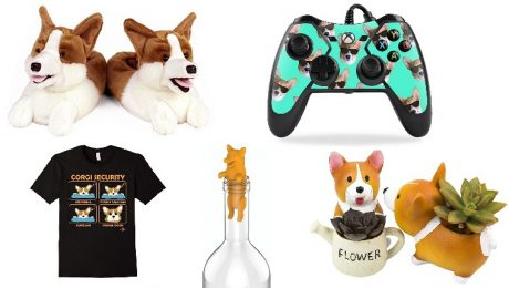 10 Sploot-worthy Holiday Gift Ideas For Corgi Lovers