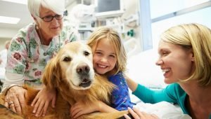 How To Register Your Dog As A Therapy Animal