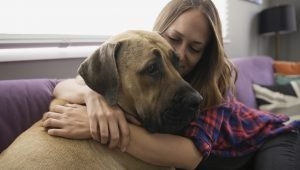 National Love Your Pet Day: How To Go Above And Beyond For Your Dog