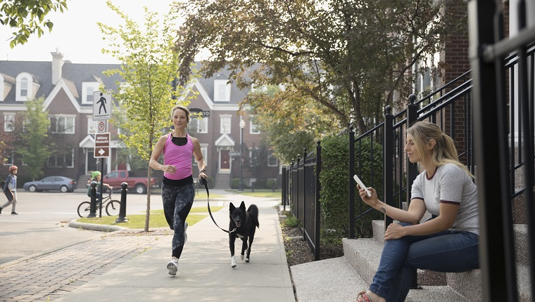 Female runner running with dog and woman texting with cell phone on neighborhood sidewalk