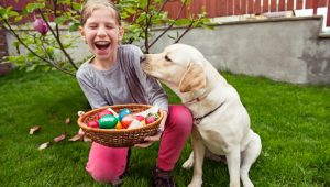 Easter Safety Tips For Dog Owners