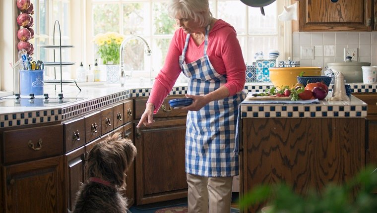 Senior woman feeding her dog in the kitchen