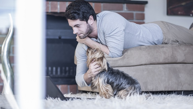 Man with dog lying on couch looking at laptop