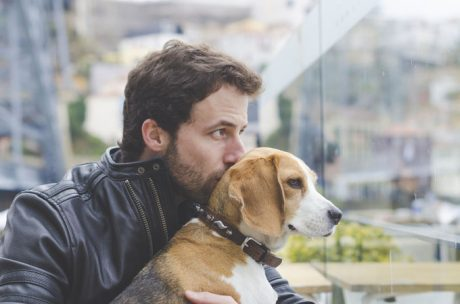 Responsible Dog Ownership Month: 7 Tips To Be A Better Human For Your Dog