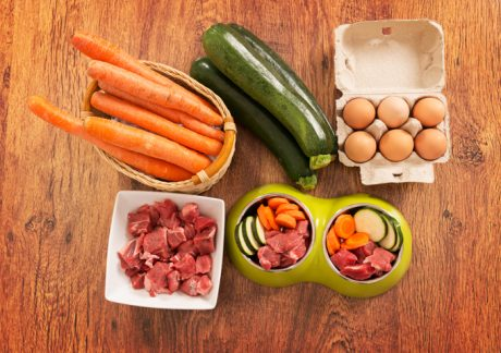 Decrease Processed Foods In Your Dog's Diet: Take The 20/20 Challenge