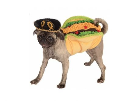 Dress Your Dog Up Like Your Favorite Food For Delicious Halloween Fun