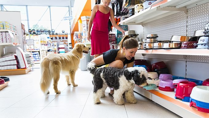 dogs with humans in pet supplies store