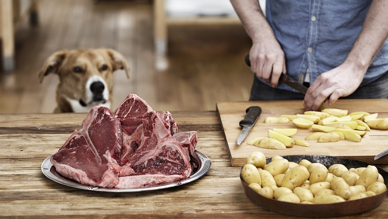 Man in kitchen preparing potatoes and steaks with dog watching