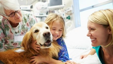 'Dog Wash' Prevents Spread Of Infections By Hospital Therapy Dogs