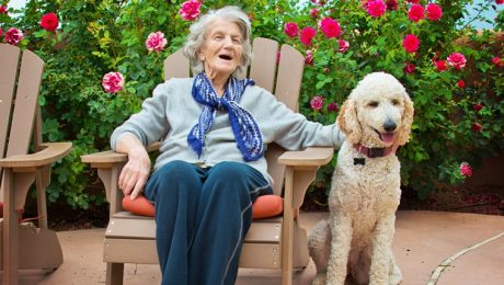 Therapy Dog Sessions Benefit Alzheimer's Patients And Their Families