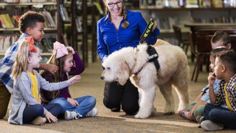 How Therapy Dogs Can Help With ADHD Symptoms