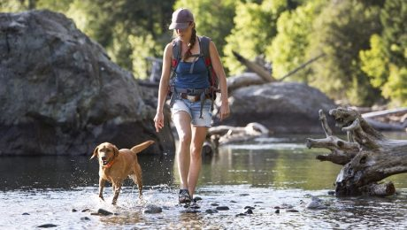 Outdoor Adventure: 5 Fun Ways To Get Fit With Your Dog This Summer