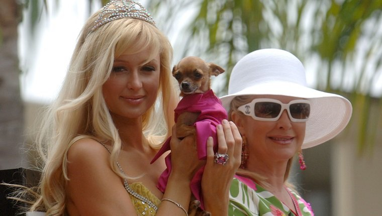 LOS ANGELES - JUNE 12: Grand Marshall Paris Hilton (L) and her mother Kathy Hilton ride on the float at the 2005 West Hollywood Gay Pride Parade, June 12, 2005 in Los Angeles, California.