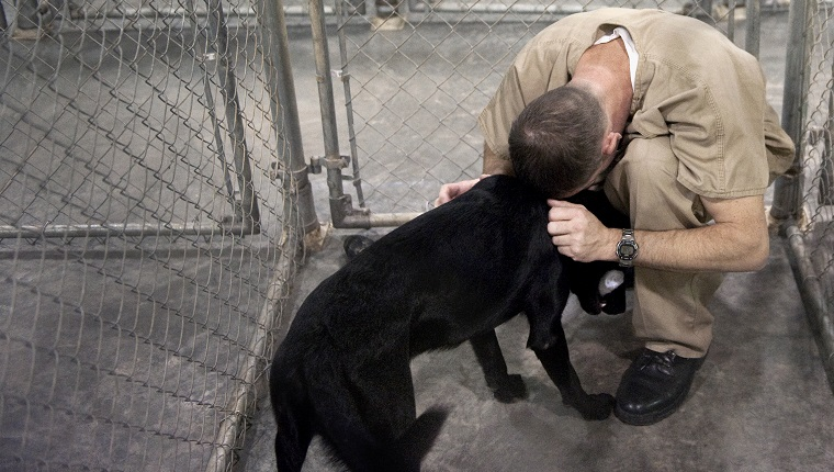 "UNITED STATES - JUNE 30: Bay Correctional Facility inmate Douglas Whitney locks up his dog Cletus after the afternoon training session. This is his fourth dog he's trained in as many years. ""It's taught me to respect life,"" he said. ""I'm more patient and caring now than when I came in here."""