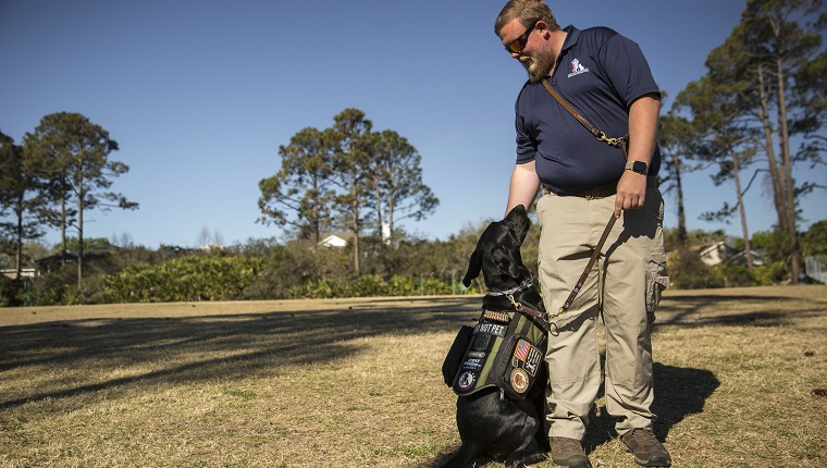 "PONTE VEDRA, FL - MARCH 15: Adam Fuller and his dog JD demonstrate the ""cover"" command for the class. The command brings the dog to the owner's side and looking behind them to protect the person when they have their back turned to a group of strangers. Fuller helps teach as part of the K9s for Warriors program, a graduate of the program in January, he is training to be a full time instructor with the organization."