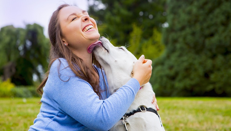 Young woman sitting with dog in park, dog licking womans face