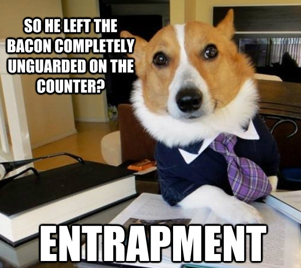 25 Funny Dog Memes Part 2 Dogtime : 24 funny dog meme from dogtime.com size 600 x 536 jpeg 151kB