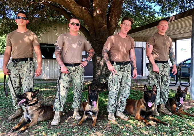 Military dogs for all.