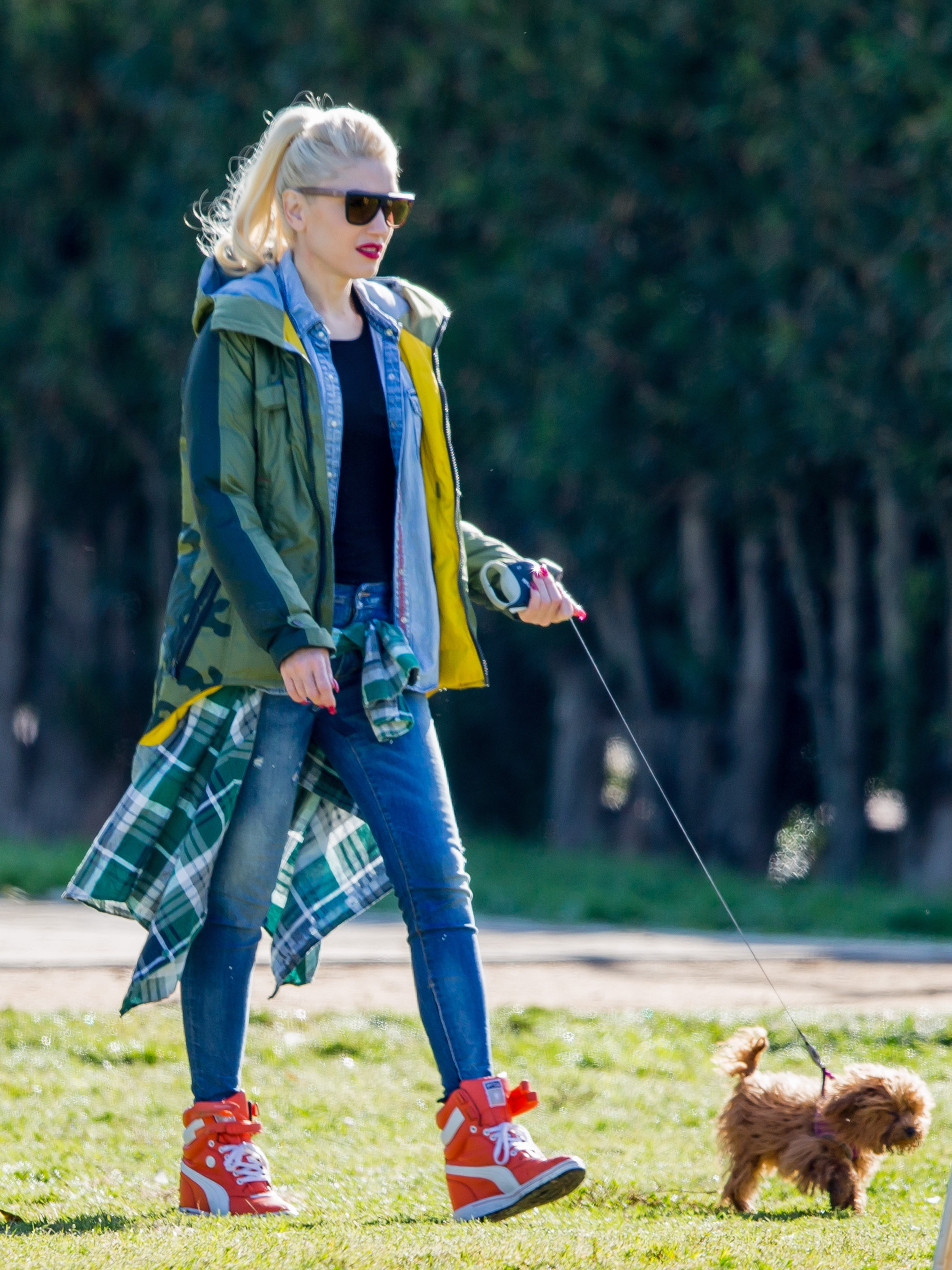 Gwen Stefani Heading To The Dog Park